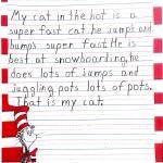 Cat Poem 1